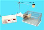 小动物自主活动记录仪 大鼠自主活动记录仪 小动物活动记录仪