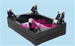 SCS(带框架)0.8m×1.2m液氯电子称