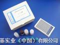 Elisa厂家供应猴子热休克蛋白糖蛋白96(HSP gp96)试剂盒
