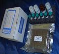 国产小鼠神经生长因子elisa试剂盒