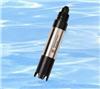 DO955溶氧电极 DO-955