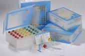年底大促销人磷脂酶A2(PL-A2)ELISA试剂盒(现货促销)