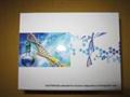 上海人干扰素调节因子elisa试剂盒