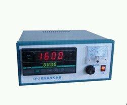 WSWK-Ⅳ微电脑时温程控仪