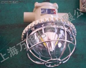 供应矿用隔爆LED巷道灯|专业生产防爆巷道灯厂家|巷道灯价格
