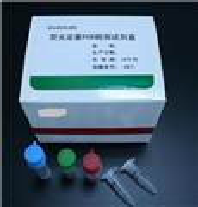 犬肌红蛋白(MYO/MB) ELISA 试剂盒