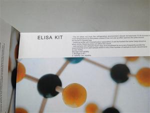 犬細胞間粘附分子1(ICAM-1/CD54)ELISA 試劑盒