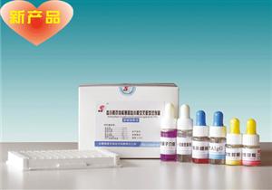 犬白介素18(IL-18)ELISA 试剂盒