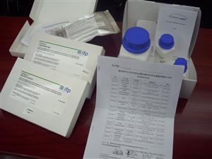 猪肝细胞生长因子(HGF)ELISA 试剂盒
