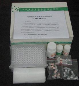 猪免疫球蛋白M(IgM)ELISA 试剂盒