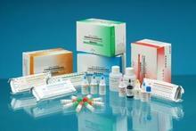 兔子可溶性血管細胞粘附分子1(sVCAM-1)ELISA 試劑盒