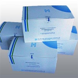 兔血管生成素2(ANG-2)ELISA 试剂盒