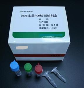 仓鼠基质金属蛋白酶9/明胶酶B(MMP-9/Gelatinase B) ELISA 试剂盒