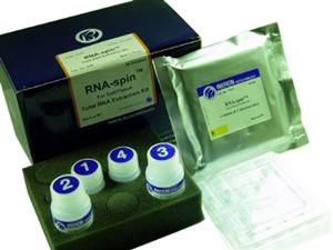 猫α干扰素(IFN-α)ELISA 试剂盒