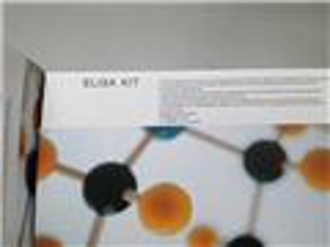 马免疫球蛋白E(IgE)ELISA 试剂盒