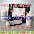 BCA蛋白定量试剂盒(23225)