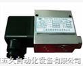 YWK-100S双触点压力控制器YWK-100S