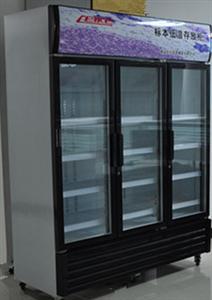 标本低温存放柜、冷藏柜(图)
