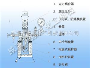 带加料口实验室反应釜,磁力搅拌高压釜厂家,实验室反应釜价格