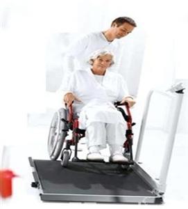 轮椅体重秤,医用轮椅秤价格,不锈钢轮椅秤