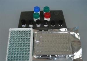 牛甘胆酸(CG)ELISA试剂盒