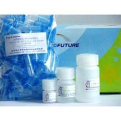 小鼠肝炎病毒(MHV)ELISA试剂盒附详细说明书,提供技术咨询