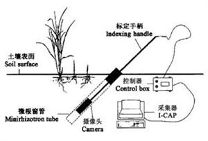 BTC微根管根系生态监测系统