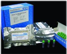 镁测试盒,镁元素测试盒现货供应,上海实验代测