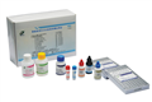 小鼠載脂蛋白B(apo-B) ELISA試劑盒廣東免費代測
