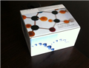 上海猪口蹄疫(FMD) ELISA试剂盒哪里有卖